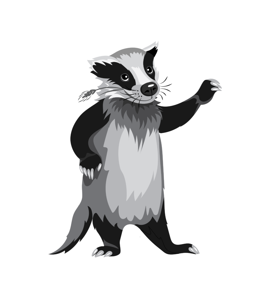 Badger PNG #115937.