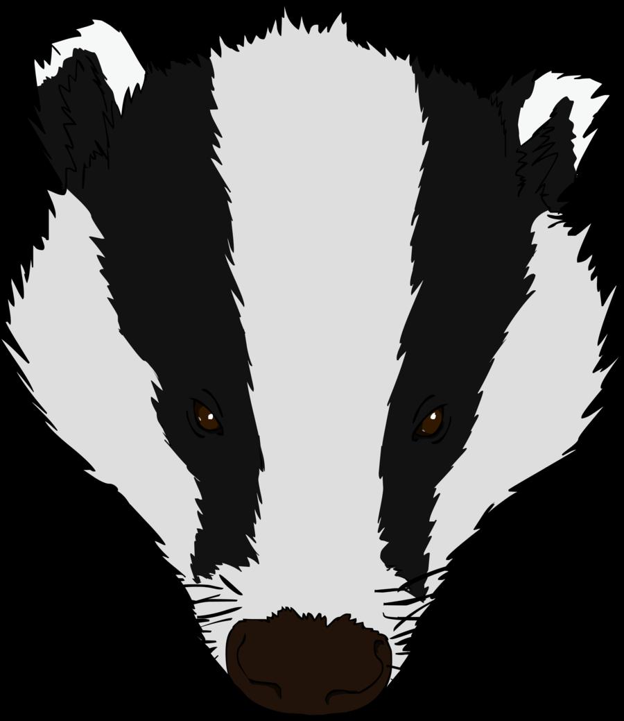 badger clip art #12.