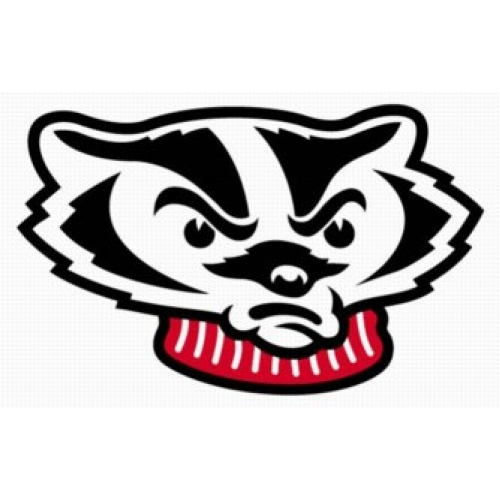 Wisconsin badgers clipart.
