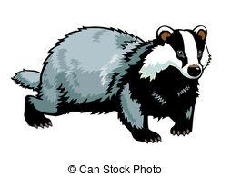 Badger Clip Art and Stock Illustrations. 512,146 Badger EPS.