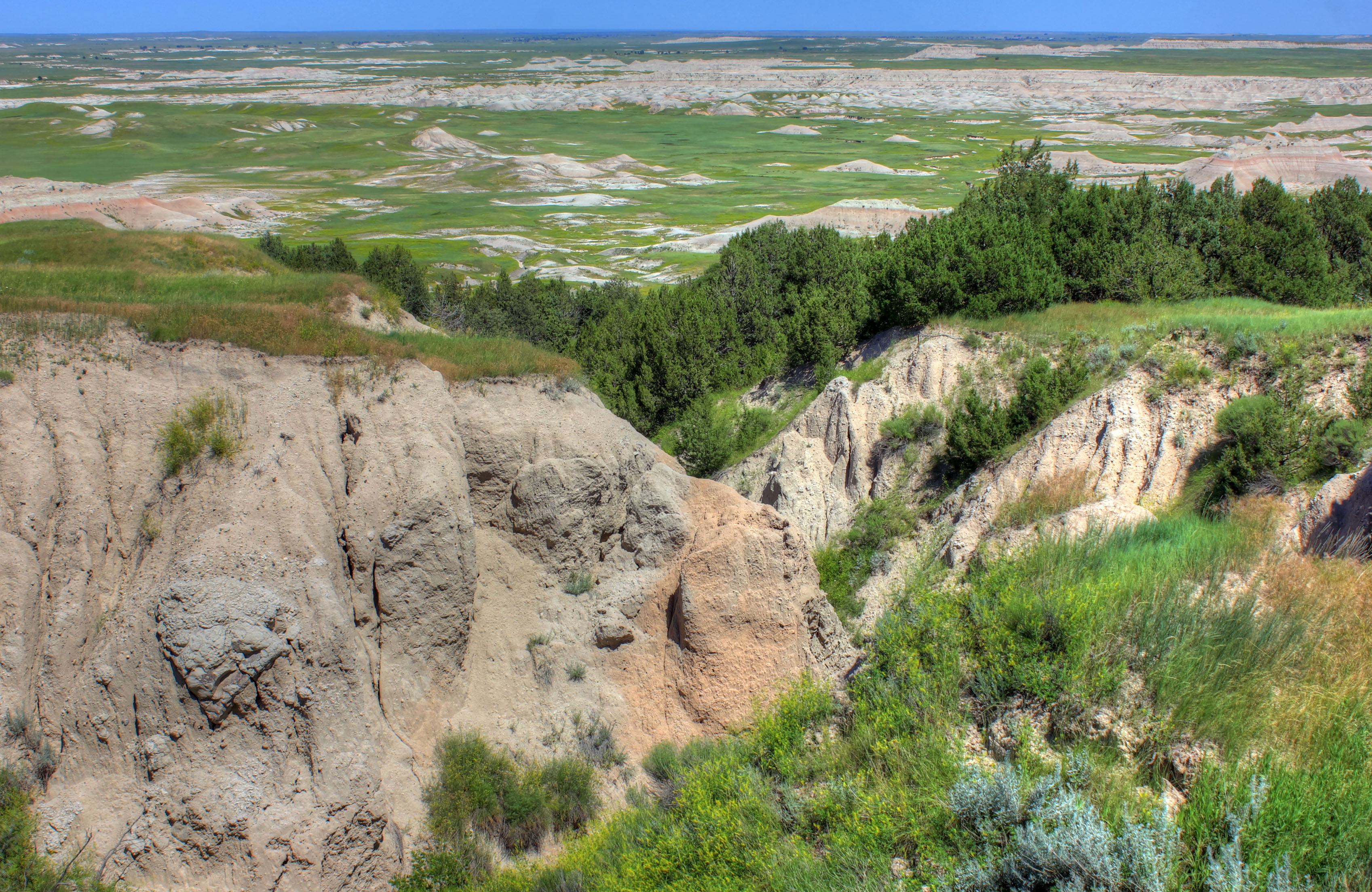 Hilltops with trees at Badlands National Park, South Dakota.