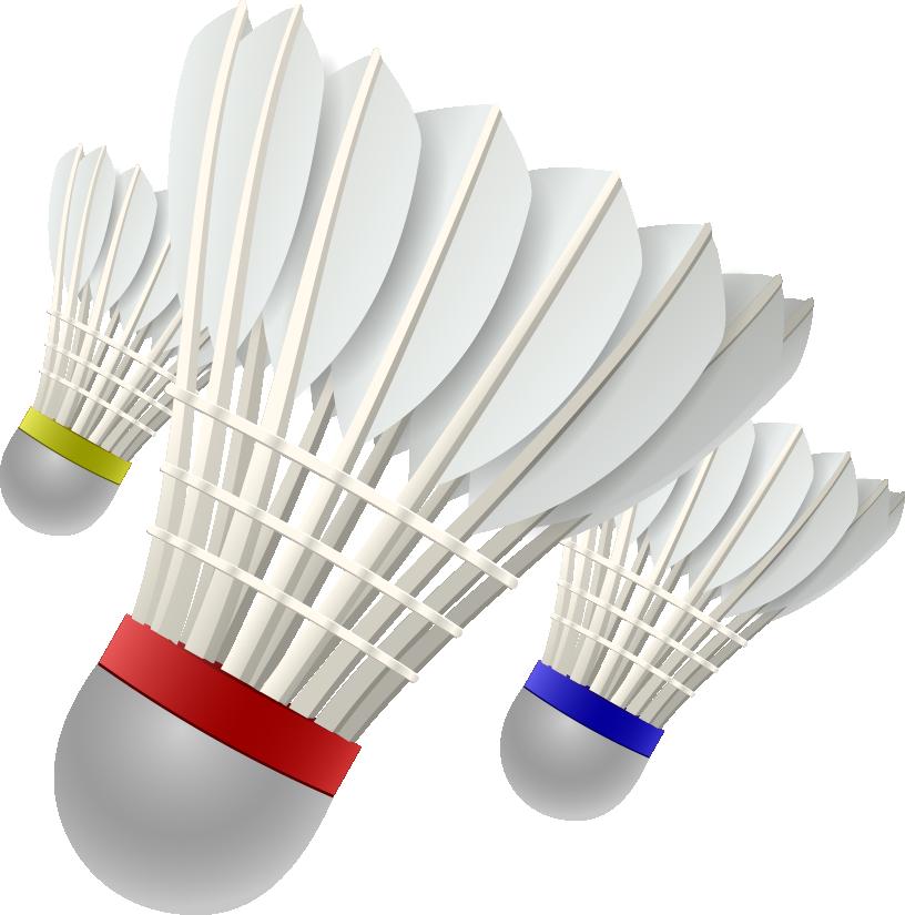 Badminton 3D Shuttlecock.
