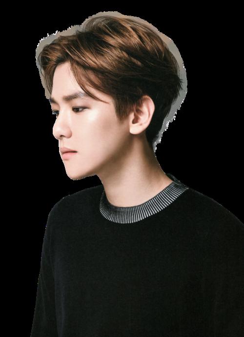exo's baekhyun png uploaded by.