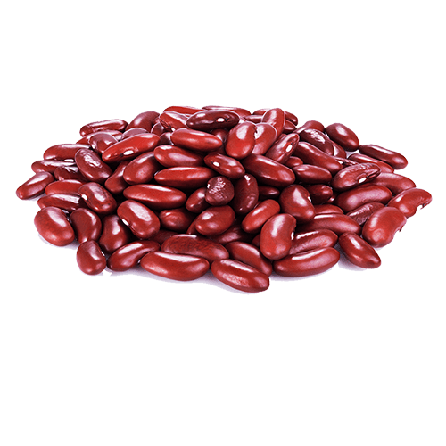 Kidney bean Common Bean Red beans and rice.