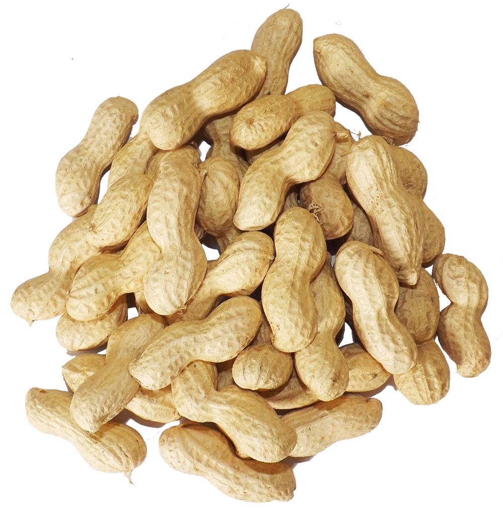 Peanuts clipart bag, Peanuts bag Transparent FREE for download on.