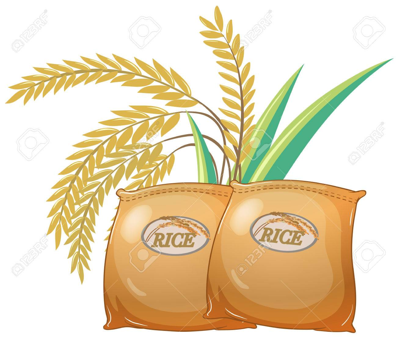 Two bags of rice illustration.