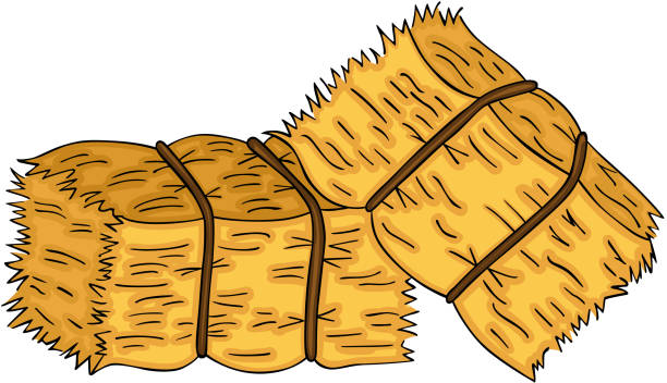 hay bale clip art 10 free Cliparts.