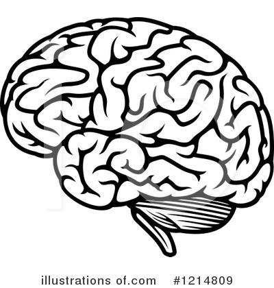 Clipart Brain & Brain Clip Art Images.