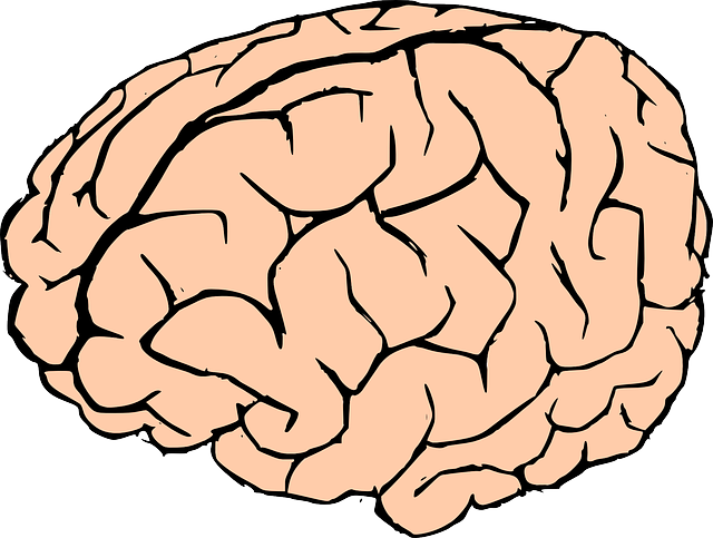 Free to Use & Public Domain Brain Clip Art.