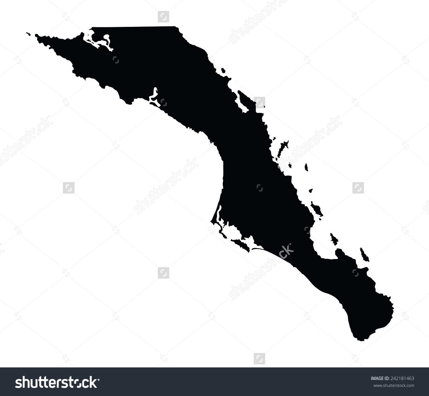 Baja California Sur Mexico Vector Map Stock Vector 242181463.