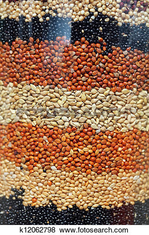 Pictures of Colorful indian millets like jowar, bajra arranged in.