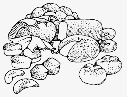 Free Baked Goods Clip Art with No Background.