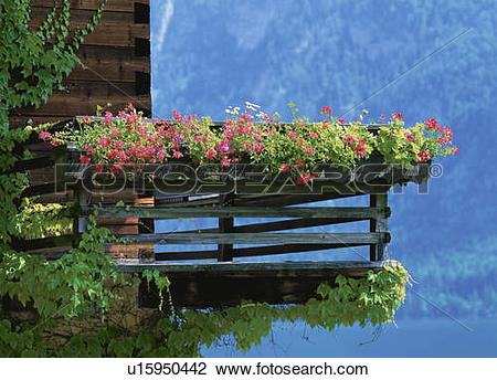 Stock Photo of Wooden balcony and flower box by the water.