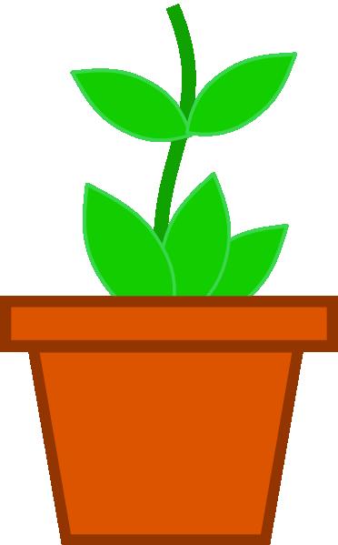 Images Of Flower Pots.