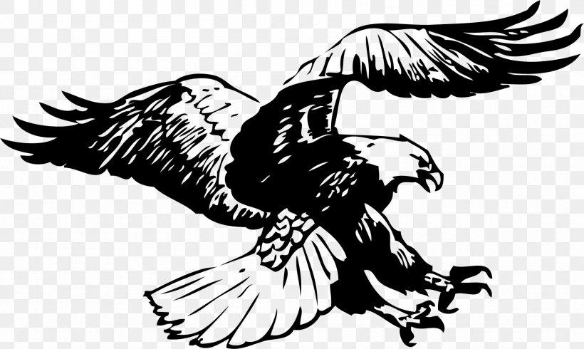 Bald Eagle Black.