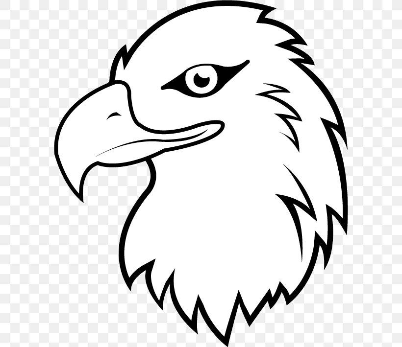 Bald Eagle White.