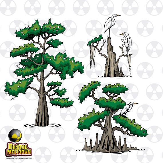 Louisiana Vector Clipart, Cypress Trees and Egrets, Instant.
