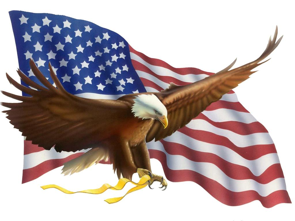 Bald Eagle And American Flag Clipart, Hd Wallpapers.