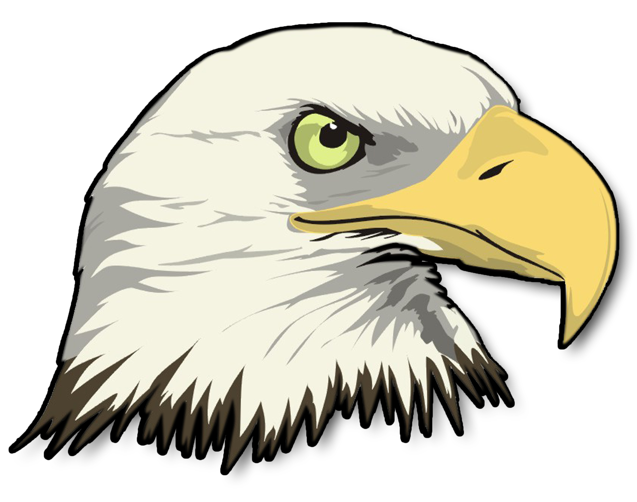 Cartoon bald eagle clipart.