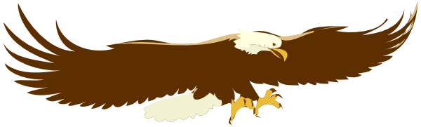 Bald eagle clip art free.