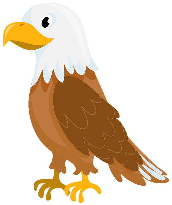 Bald eagle clipart. Free download..