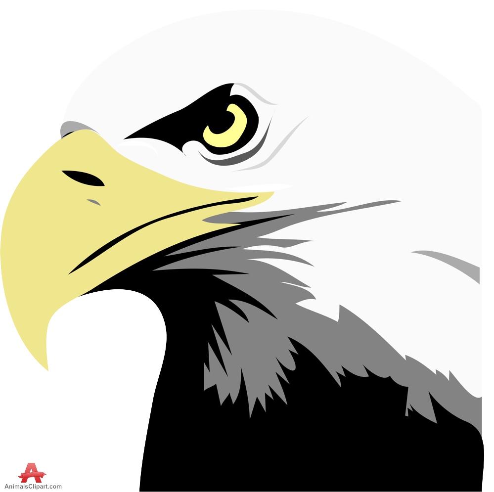 eagle bald clipart clip eagles cliparts library clipground 123clipartpng