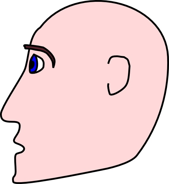 Man Head Side Bald clip art Free vector in Open office drawing svg.