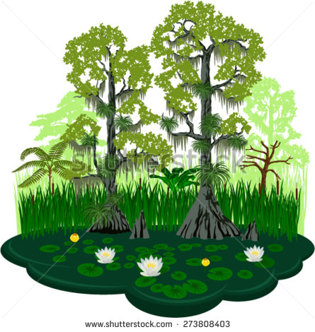 Bald cypress tree clipart.