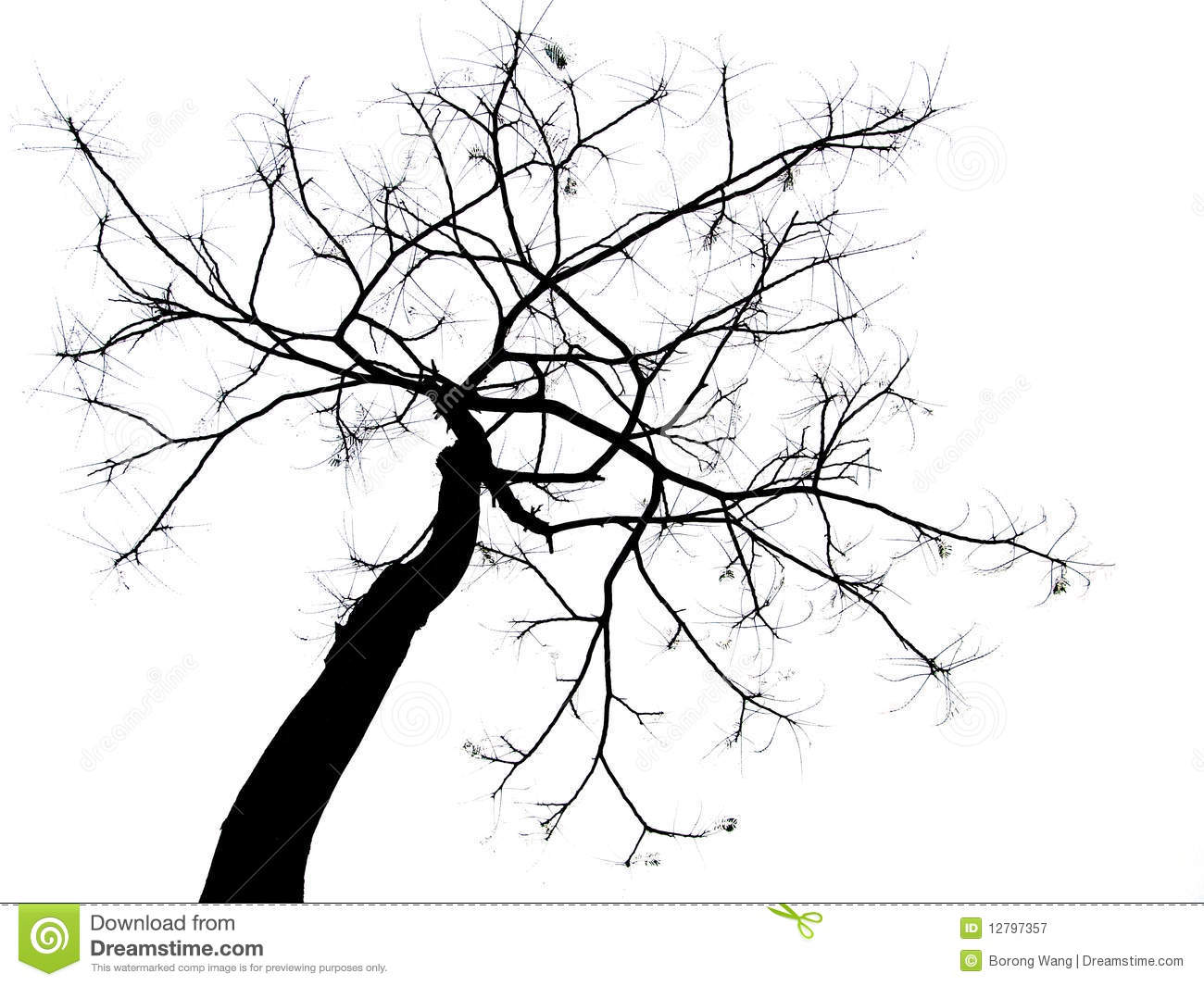 Bald Tree Royalty Free Stock Photography.