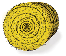 Bale of hay clipart.