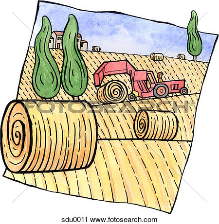 Hay Straw Clipart.