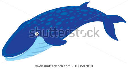 Blue Whale Pictures.