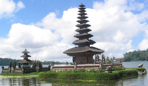 Balinese Water Temples: Modern Agriculture Run Amuck.