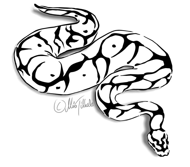 Ball python clipart 20 free Cliparts | Download images on ...