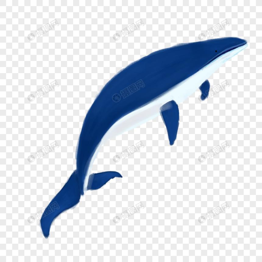 ballena azul Imagen Descargar_PRF Gráficos 400230735_PNG Imagen.