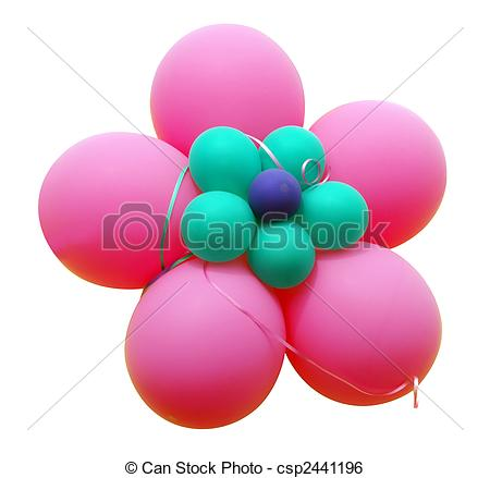 Stock Image of Pink Balloon Flower isolated csp2441196.