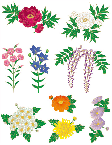 Balloon Flower Clip Art, Vector Images & Illustrations.
