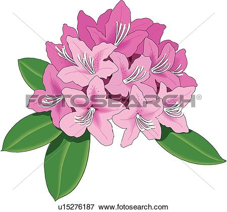 Clip Art of Balloon Flower u11608749.