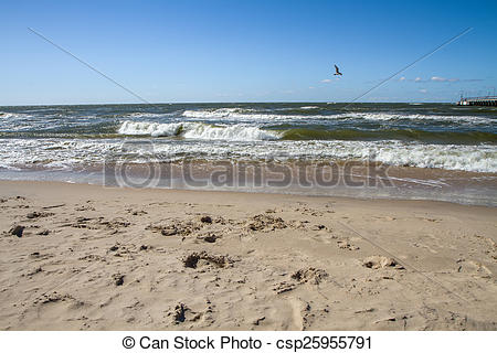 Stock Illustration of Baltic sea coast near the Palanga.