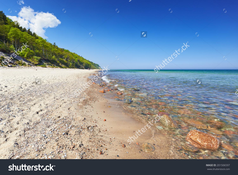 Baltic Sea Coast, Mediterranean, Poland. Summer Sand Forest Blue.