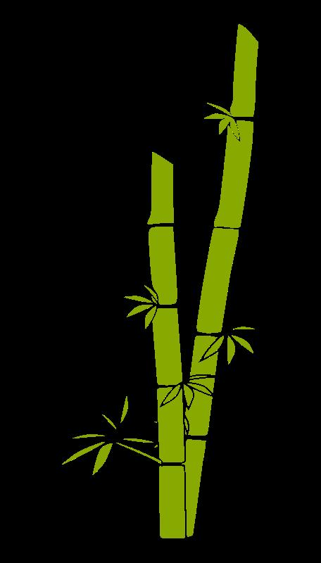 Bamboo Free Vector / 4Vector.