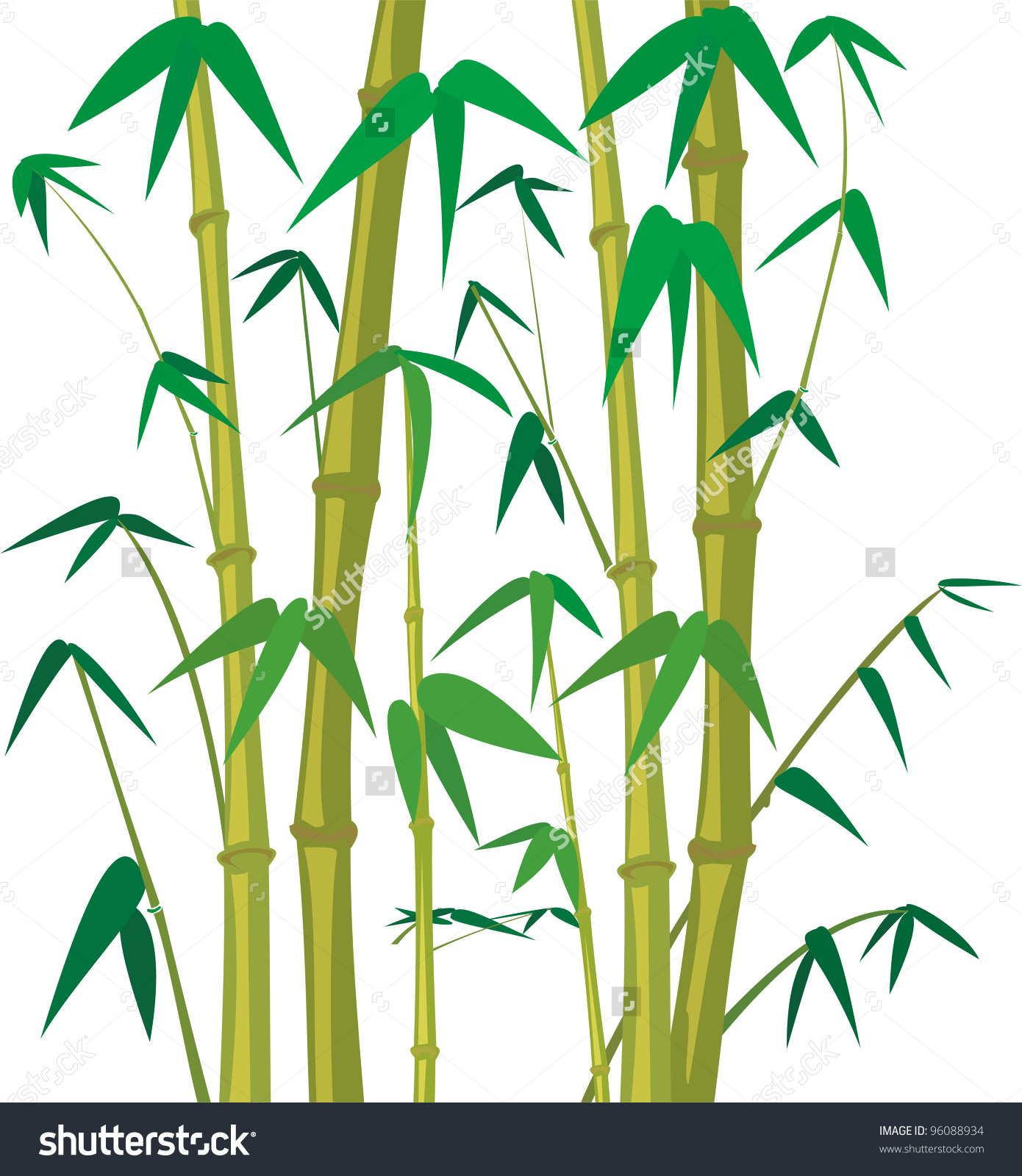 Bamboo Tree Stock Vector 96088934.