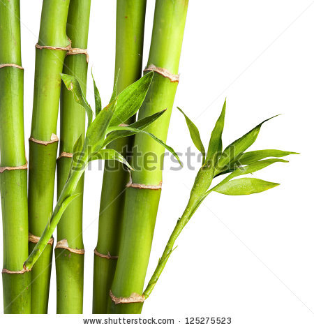 Bamboo Clip Art Page 1.