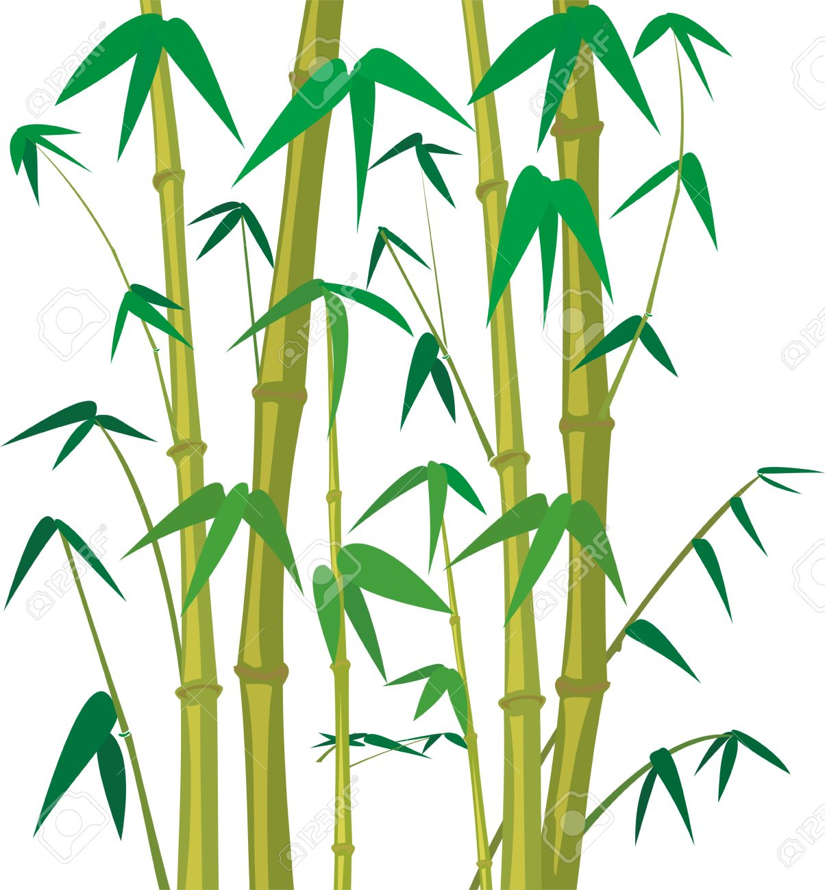1,739 Bamboo Grass Stock Vector Illustration And Royalty Free.