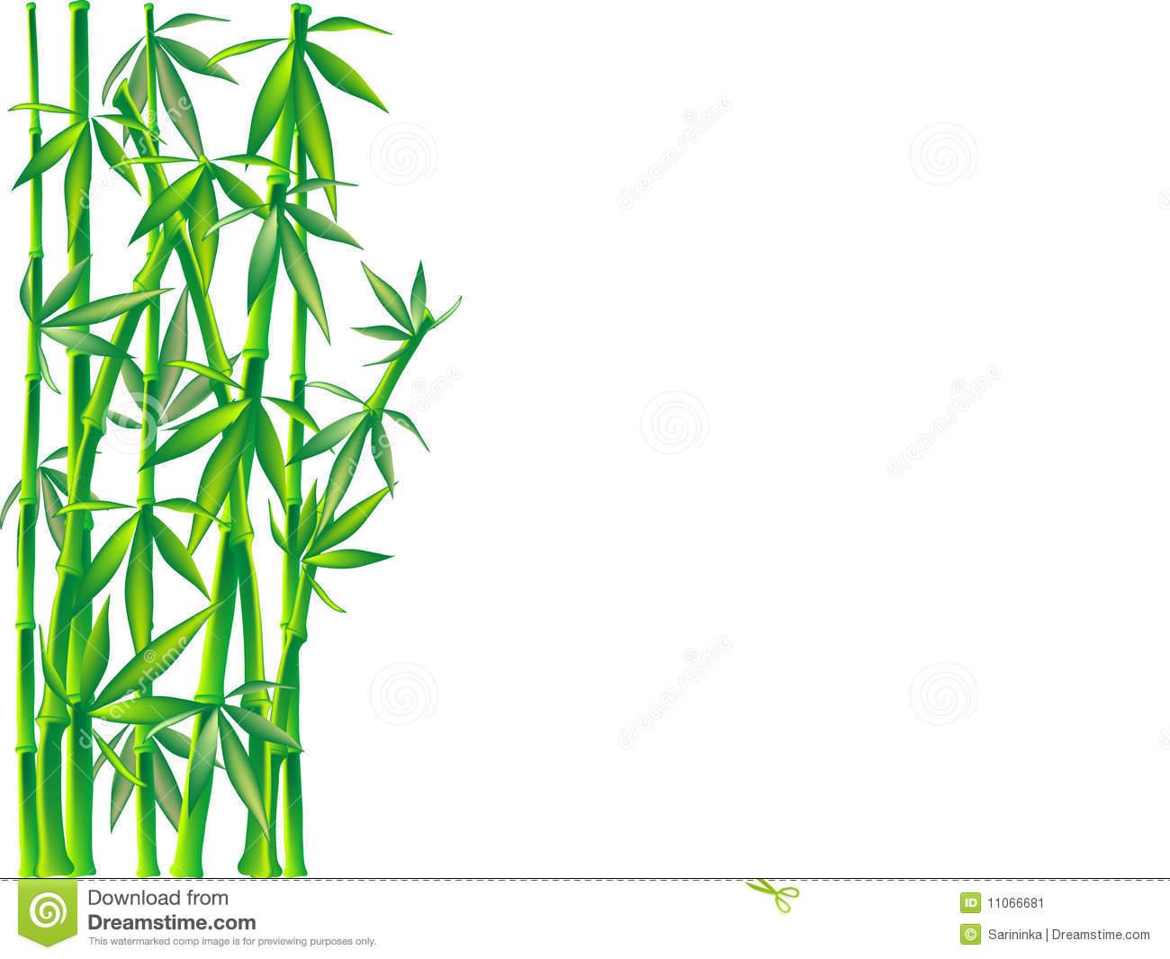 Bamboo borders or clip art.