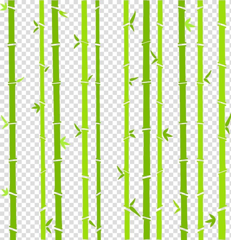 Green bamboo tree art, Bamboo Bambusa oldhamii , Dragon Boat.