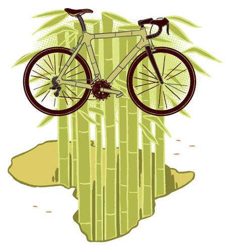 Carl Wiens: Bamboo Bike Project.
