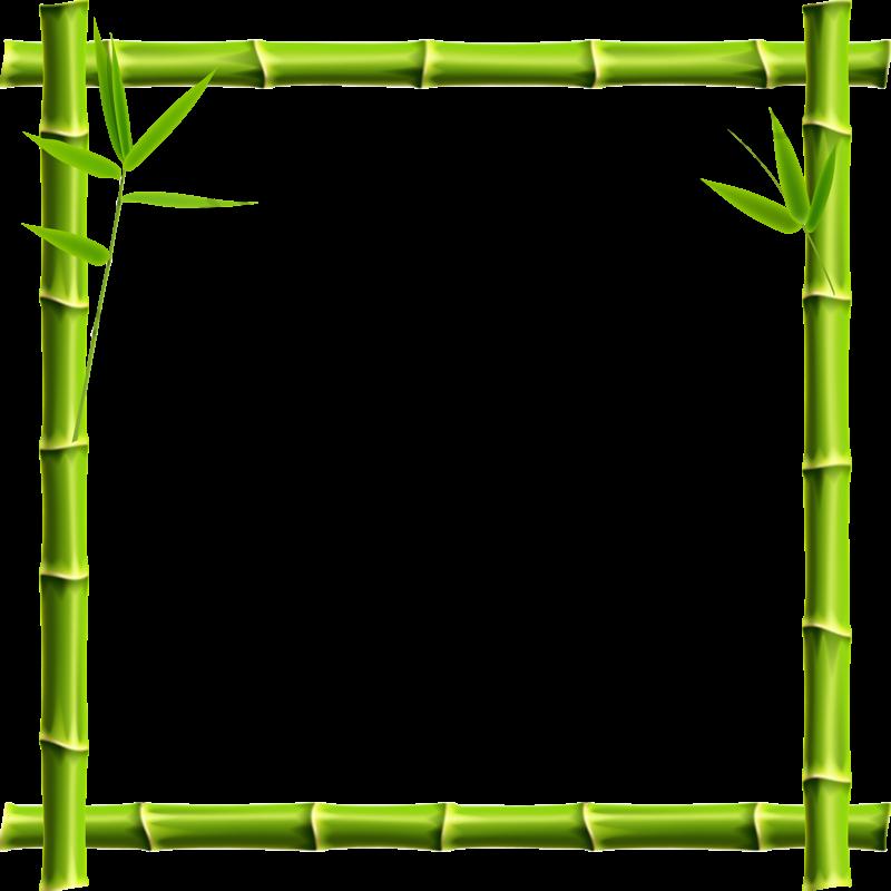 Bamboo Border, Bamboo Clipart, Green, Bamboo PNG Transparent Image.