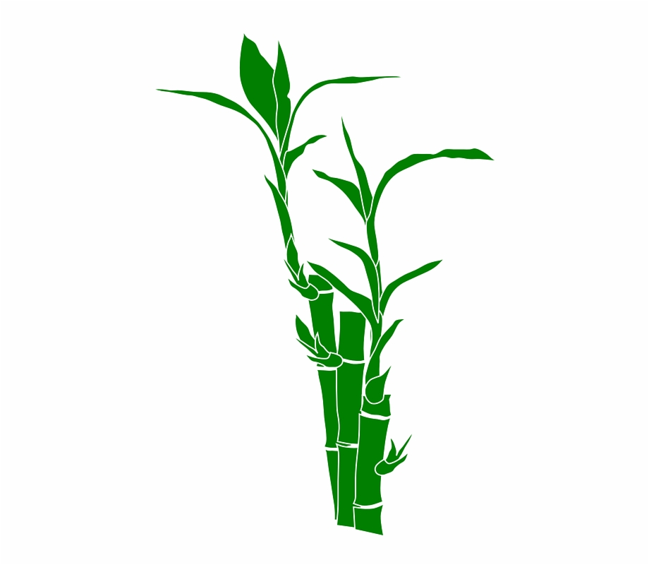 Bamboo Clipart, Transparent Png Download For Free #1548433.