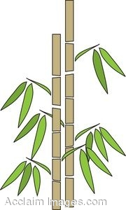 Clip art bamboo.